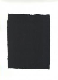 Ткань плащевая для МВД с МВО, ВЗО